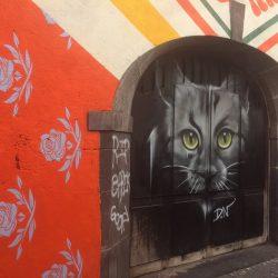 Sortie street art pour les cp, ce1, ce2